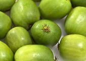 Kiwi Berry or Actinidia arguta