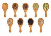 Collection of various spices on a wooden spoons isolated on white background