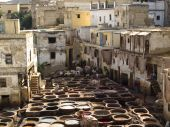 Fes City - Tannery