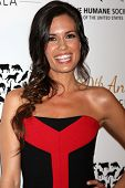 LOS ANGELES - MAR 29:  Torrey DeVitto at the Humane Society Of The United States 60th Anniversary Ga