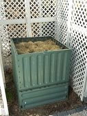 Green plastic compost bin full with lawn cut grass
