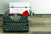 Vintage Typewriter With Paper Page And Rose Flower