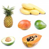 picture of avow  - Fruits collage with avocado bananas mango papaya and pineapple - JPG