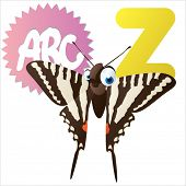 Z is for Zebra butterfly