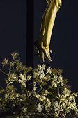 Legs Of Jesus Christ Crucified
