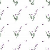 stock photo of lavender plant  - Lavender decorative pattern - JPG