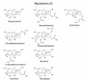 Structural Chemical Formulas Of B-type Mycotoxins