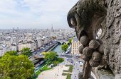 foto of gargoyles  - Detail of one of the gargoyles in Notre Dame Cathedral Paris France - JPG