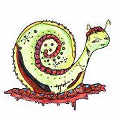Cartoon Snail