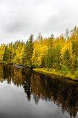 Autumn Landscape. River In North Karelia