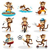 picture of monkeys  - A vector illustration of monkey doing activity - JPG
