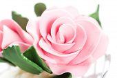 fondant pink rose