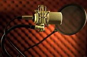 Condenserw Microphone With Shock  Mount