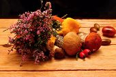 foto of beechnut  - Mushrooms and heather on wooden board with wood fruit and wood nuts - JPG