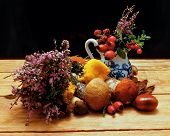 pic of beechnut  - Mushrooms and heather on wooden board with wood fruit and wood nuts - JPG