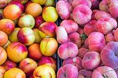 Different kinds of peaches