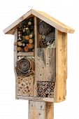 image of stick-bugs  - Wooden insect house decorative bug hotel ladybird and bee home for butterfly hibernation and ecological gardening - JPG