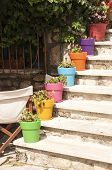 Staircase with colorful flowerpots