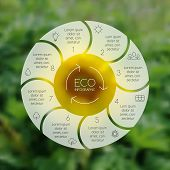 Crcle ecology infographic. Nature blur background.