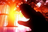 pic of mystique  - Aligators in a Mysterious Deep Jungle in the Sunset - JPG