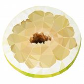 image of pomelo  - Vector low poly half of pomelo on white background - JPG