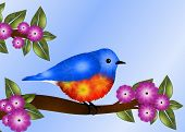 pic of orange blossom  - Greeting card design depicts beautiful blue and orange breasted bird  - JPG