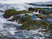 image of tanah  - The sea at the Tanah Lot temple - JPG