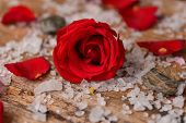Red roses with pile of salt on old wooden board