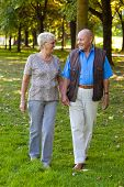 picture of old couple  - Mature couple in love seniors is walking in a park - JPG