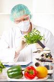 image of genetic engineering  - Researcher holding up a GMO vegetable - JPG