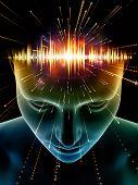 Evolving Consciousness poster