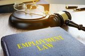Employment Law In A Court. Labor Code Concept. poster