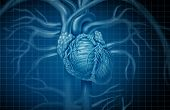Human Heart Background And Cardiovascular Circulation Concept As Blood Circulatory And Cardiac Symbo poster