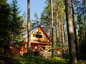 image of log cabin  - Wooden log House in the sunny forest - JPG