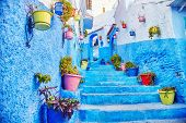 Morocco Is The Blue City Of Chefchaouen, Endless Streets Painted In Blue Color. Lots Of Flowers And poster