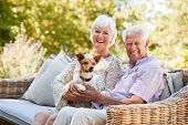 Happy senior couple sitting with a pet dog in the garden poster