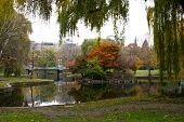 Autumn Public Garden