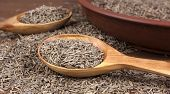Cumin Dry Seeds Into A Bowl On A Wooden Table. Cumin Seeds In Wooden Spoon poster