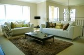 stylish living room with elegant furniture