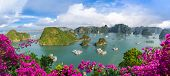 Landscape With Amazing Halong Bay In Vietnam poster