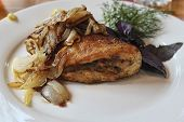 Pike Perch Roasted With Onions