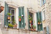 Window Garden In Vence France