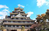 Okayama castle (Ravens Castle, Black castle), Okayama city, Japan, Asia poster