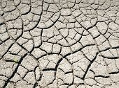 Cracked Soil Background.