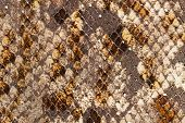 Texture Of Genuine Leather With Of Scaly Exotic Reptile Close-up, Trend Pattern, Natural Brown Color poster