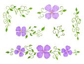 Set Of Floral Decor Elements As Patterns, Watercolor Hand Painted