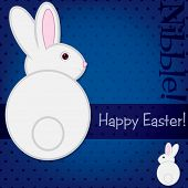 stock photo of nibbling  - Easter bunny nibble card in vector format - JPG