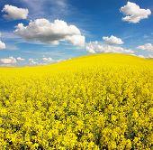 Bereich der RaPS mit schöne Wolke - Anlage für grüne Energie