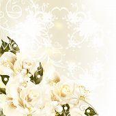 Fundo de belo Design com rosas Pastel, peras, redemoinho ornamento para o projeto de casamento