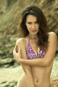 Relaxed attractive brunette girl wearing purple bikini poses on the rock